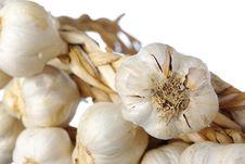 Free White Garlic Isolated Stock Photography - 8358222