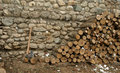 Free Fire Wood Royalty Free Stock Images - 8364049