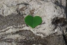 Free Heart On Rock Royalty Free Stock Image - 8360246