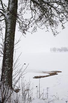 Free Misty Landscape Royalty Free Stock Images - 8361729