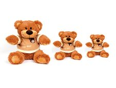 Free Teddy Bear Stock Photo - 8362600