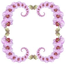 Free Pink Orchid Frame Royalty Free Stock Image - 8362796