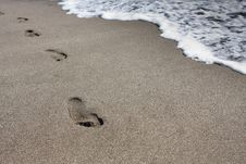 Free Footprints In The Sand Royalty Free Stock Photo - 8363035