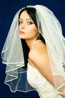 Free Beautiful Brunette Bride Stock Photography - 8363102