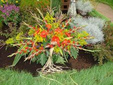 Free Rich Floral Dekoration Royalty Free Stock Photos - 8364038