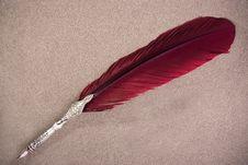 Peackock Feather Royalty Free Stock Photos