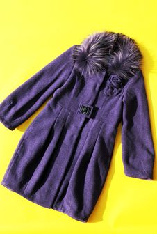 Fashion Coat For Lady Royalty Free Stock Photo