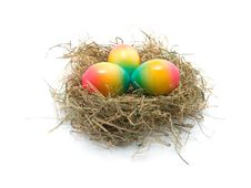 Colored Easter Eggs In The Nest Stock Photo
