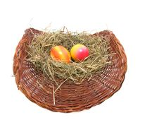 Colored Easter Eggs In The Nest Stock Image