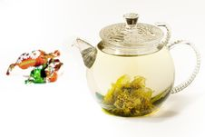 Blooming Tea Stock Photo