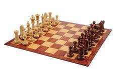 Free Chess Stock Image - 8367451