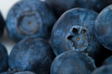 Free Blueberry Royalty Free Stock Image - 8367496