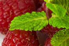 Free Strawberry And Mint Stock Image - 8367511
