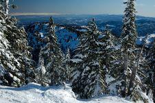 Free Ski Slope On The Mountain Stock Photo - 8367970