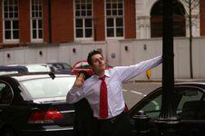 Free Free Businessman Stock Image - 8368501