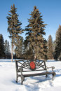 Free Winter Bench Royalty Free Stock Photography - 8371347