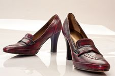 Free Woman S Shoes Royalty Free Stock Image - 8372496