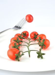 Free Tomatoes Royalty Free Stock Photography - 8374187