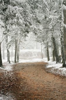Free Winters Walkway Stock Image - 8375811