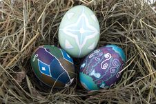 Free Colored Easter Eggs In The Nest Royalty Free Stock Images - 8375819