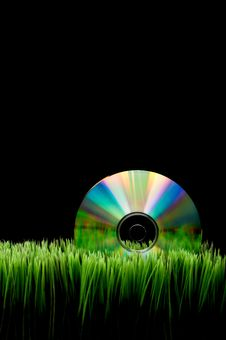 Free Compact Disk On Grass Royalty Free Stock Photo - 8377645