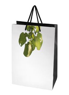Free Paper Bag Royalty Free Stock Photos - 8377748