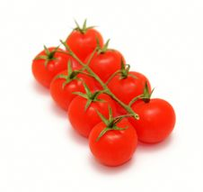 Free Cherry Tomatoes Stock Photography - 8378272