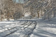 Winter Rural Road Royalty Free Stock Photos