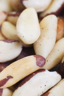 Free Cashew Nuts Stock Photography - 8379982