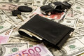Free Leather Wallet,keychain,car  On Dollars Royalty Free Stock Image - 8380366