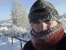 Free Russian Winter: Frost Stock Photo - 8380130