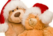 Free Teddy Bear Stock Photo - 8380840