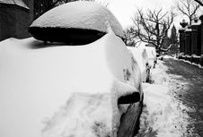 Free Snowed In Royalty Free Stock Photos - 8381648