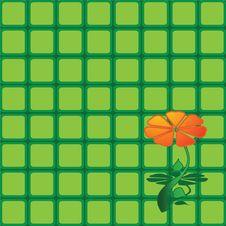 Free Back Ground Stock Image - 8382021