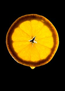 Free Juicy Orange Stock Image - 8383121