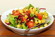 Free Served Salad Stock Image - 8384821