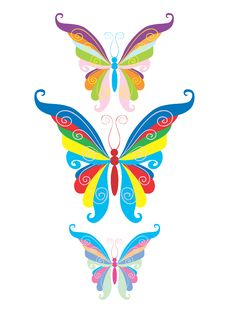 Free The Butterfly Stock Photo - 8388510
