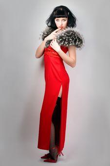 Beauty Girl In Retro Dress Stock Photos