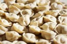 Free Uncooked Meat Dumplings Royalty Free Stock Images - 8389529
