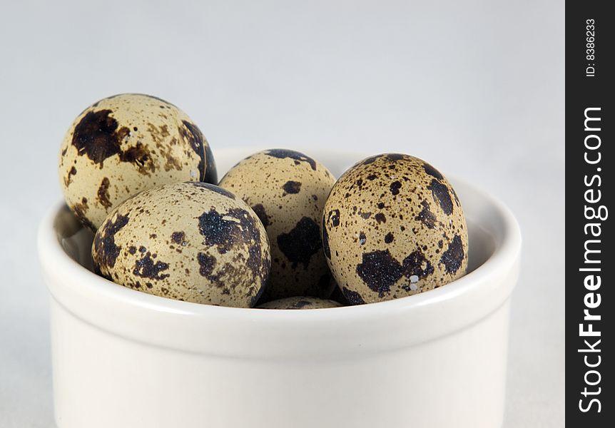 Quail s eggs