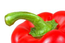Red Pepper Closeup Stock Images