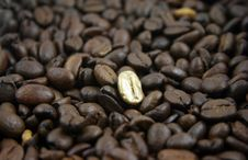 Free Golden Coffee Bean Royalty Free Stock Photo - 8391435