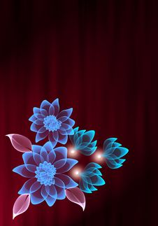 Free Transparent Flower Stock Photography - 8391632
