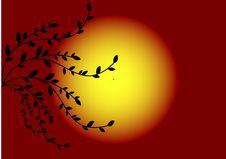 Free Sundown Stock Image - 8392211