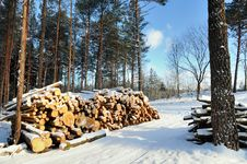 Free Stacked Wood Stock Photo - 8392330