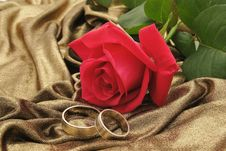 Free Rose And Rings Royalty Free Stock Photos - 8393568