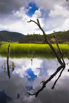 Free Lake And Reflection On Water Stock Photography - 8393952