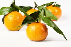 Free Orange Stock Photo - 8394230
