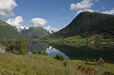 Free Norwegian Landscape Stock Photo - 8395070