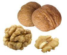 Free Walnuts Stock Photo - 8396520